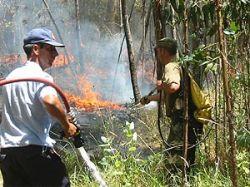 Bomberos trabaja en liquidación de incendios en la costa