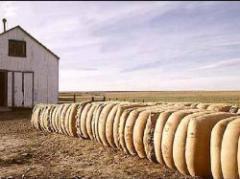 Histórico fardo de lana