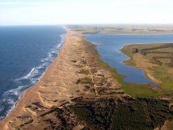 Áreas Protegidas: turno para la Laguna de Rocha