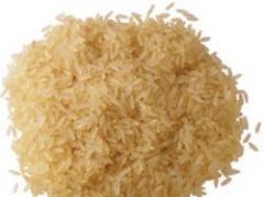 Producción de arroz fue más baja de lo estimado