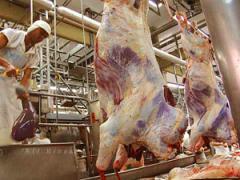 ¿Cómo se fijan los precios de la carne? (audio)