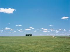 La venta de grandes extensiones de tierra a extranjeros (audio)