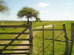 Las condiciones y cuidados sobre la compra de tierras
