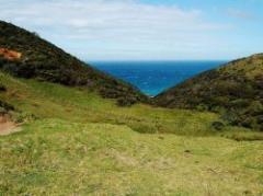 Nueva Zelanda, una referencia siempre presente para el Uruguay