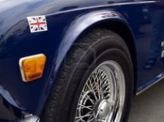 Asociación médica británica recomienda no fumar en autos