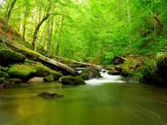 Más inversión de calidad en materia social y ambiental