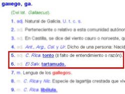 """La palabra """"gallego"""" dejará de significar """"tonto"""" en 2014"""