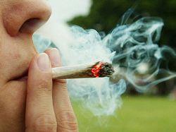 Vinculan consumo de cannabis con prevención de diabetes