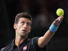Djokovic gana en Bercy tras derrotar a Ferrer