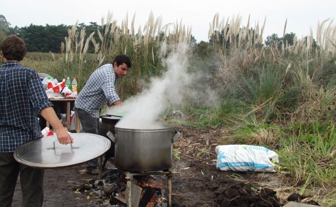 La Tertulia Agropecuaria: La Chocleada, una iniciativa para cosechar maíz y fomentar la solidaridad