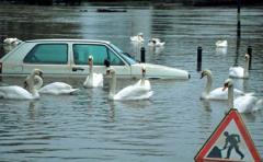 El cultivo de soja y las represas, Â¿causa de las inundaciones?