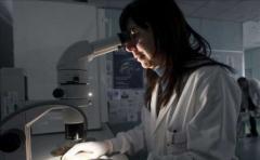 Estudio vincula genes a cometer actos violentos