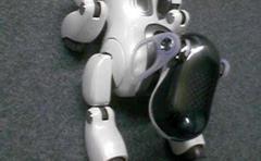 """El mítico robot canino Aibo se queda sin """"veterinarios"""""""