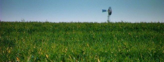 La Tertulia Agropecuaria: análisis del desempeño del agro en 2014 y proyecciones para el año que viene