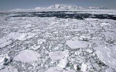 Avión polar para mejorar exploración de Antártida