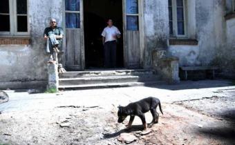 Aún quedan perros por capturar en la Colonia Etchepare
