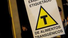 La batalla sobre el etiquetado de transgénicos en Uruguay