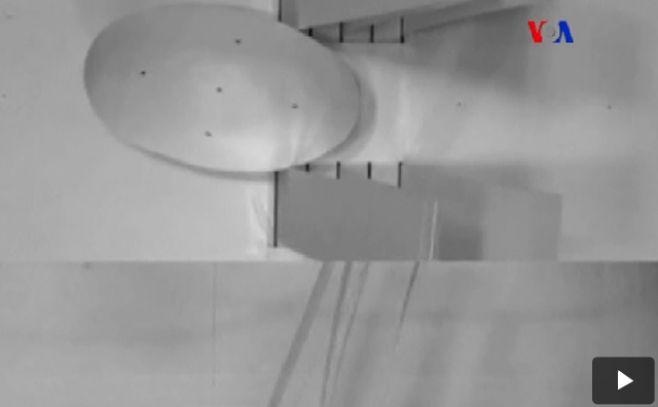 Robot cucaracha: esperanza para búsqueda y rescates