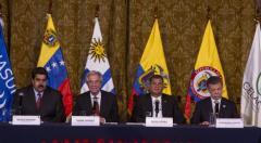 No hay institucionalidad para resolver el conflicto en la frontera según politóloga colombiana