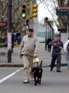 Perros guías en Uruguay
