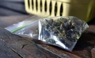El Gobierno puso un plazo para comenzar a comercializar cannabis