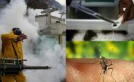Los ensayos de la vacuna del zika comenzarán en año y medio