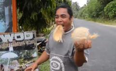 ¿Cómo pelar un coco en solamente 10 segundos?