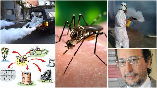 Fumigaciones / Dengue / Medardo Ávila.
