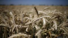 ¿Podremos alimentar al planeta en el año 2050?
