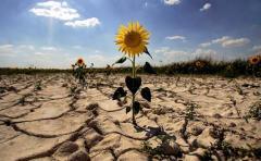 Cinco imágenes para conmemorar el Día de la Tierra