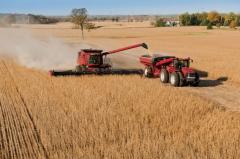 Argentina: incidiendo en el mercado mundial de la soja