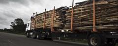 SUCTRA levantó paro  de transporte de cargas