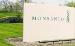 "Bayer y Monsanto: negocio ""tóxico"""