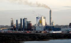 Uruguay podría albergar una tercera planta de celulosa
