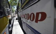UCOT no está segura de poder absorber trabajadores de Raincoop
