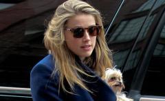 Amber Heard podría tener nuevo compañero sentimental