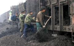 Greenpeace denuncia daños mineros a bosque chino