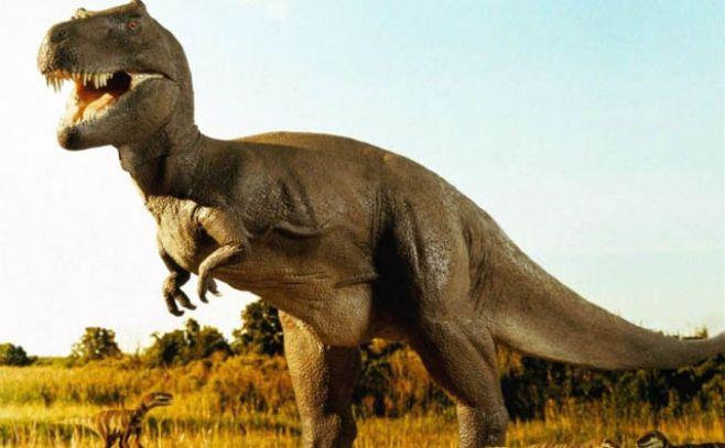 Así es la gigantesca huella de dinosaurio hallada en Bolivia