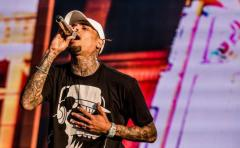 Chris Brown arrestado por asalto con arma mortal