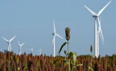 Dos parques eólicos generarán 1000 megavatios
