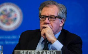 EEUU invita por primera vez a la OEA a observar sus elecciones