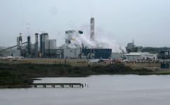 En Argentina dicen que UPM contaminó el río Uruguay