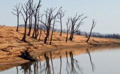 Cambio climático: un planeta en riesgo de colapso