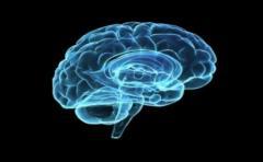 Uruguayo busca hacer historia sanando cerebros con realidad virtual