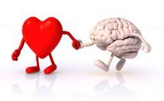 Inteligencia emocional ¿cómo funciona nuestro cerebro?