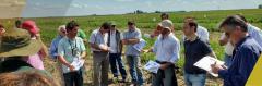 Argentina: el 56% de los productores cree que es buen momento para invertir