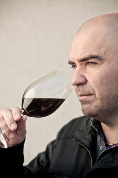 Entrevista central: Patricio Tapia//Antonella De Ambroggi presenta vinos para regalar según la personalidad del destinatario//Javier Guemberena habla de los vinos de cosecha tardía y de postre.
