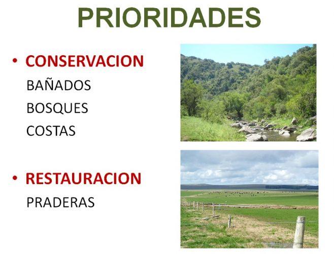 Luces y sombras de la Estrategia de conservación de la biodiversidad