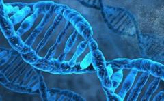 La genética abre la puerta a nuevos fármacos