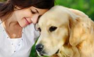 ¿Cómo hay que hablarle a los perros?